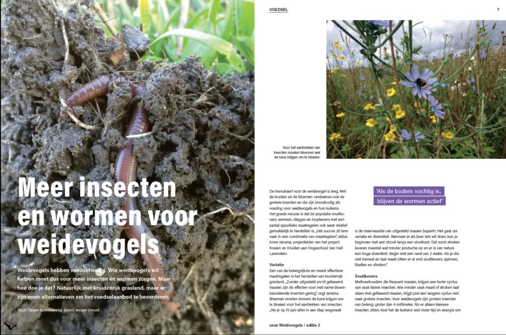 magazine 'onze weidevogels'editie 2